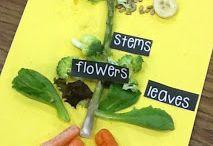 Kids Food and Health