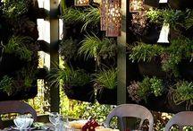 Ings / Ings Garden