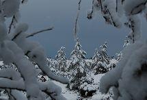 my winter mood....