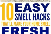 Good smells for house