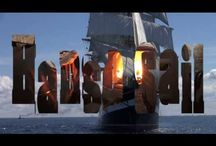 Hanse Sail 2014 Rostock / Sail tollschepen in Rostock
