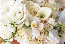 Floral Arrangements / Love flowers and all the varieties that have been created by our Creator for our enjoyment! / by Judith Karen