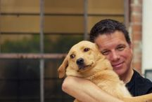 Pet News you need to know / The latest in animal news and health from around the globe.