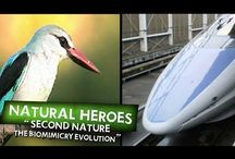 Biomimicry: Inspired by Nature / Inspired by nature