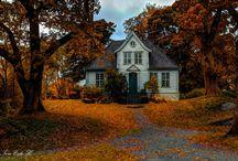 Осень / Золото осени