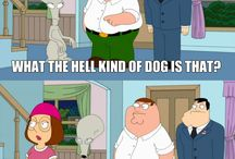 family guy series