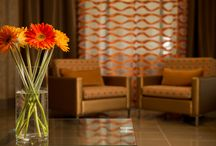 Toronto, Canda / The Park Inn Toronto- Markham hotel is pleased to offer guests a vibrant, friendly hotel. / by Park Inn by Radisson