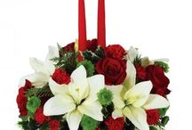 Christmas / It's the most wonderful time of the year... for flowers!