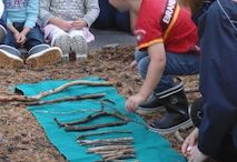 Nature Forest education ece