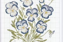 pansy violet forget me not & flowers