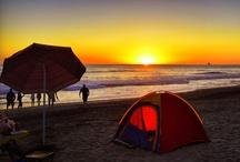 I Love the Ocean and the Beach