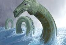 Cadborosaurus / Fact or fiction? Friend or foe? A beloved legend of the area, all things related to our local sea monster the Cadborosaurus, an early resident of Cadboro Bay.