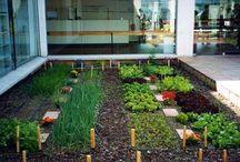 Horticultura y jardinería