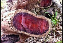 art legno