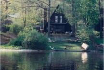 photos // cabin fever