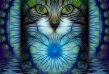 Cats / Angel cats