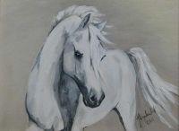 Horses / Obrazy koni