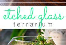 etcihen glas
