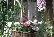 Garden / by Annet **Het Geruite Roosje** Blankestijn