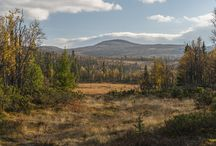 Pics from Norway / Various nature
