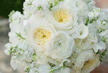 Bridal Bouquets - White & Light / Gorgeous, modern bridal bouquets featuring mostly white flowers.