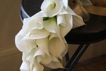 wd_bouquet