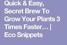 Grow faster tips