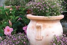 Gardening / by Delia Weiss