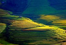 Unberührte Reiseziele in Vietnam / Vietnam ist ein schönes Land mit erstaunlichen Sehenswürdigkeiten. Die Touristen können berühmte Reiseziele wie Ha Long Bucht, Trang An Ökotourismus oder die Altstadt Hoi An. Daneben gibt es auch viele schöne unberührte Reiseziele. Darunter sind 7 unberührte Reiseziele in Vietnam, die die Besucher nicht verpassen sollen.