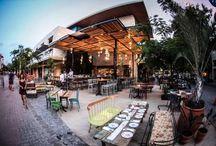 The Best Places to Eat / Lugares que recomendamos en Playa del Carmen