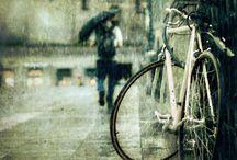 rowery i kociaki :)