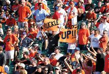 Orioles Magic / How 'bout dem O's?