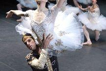 Prima ballerina / my firts love