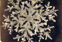 SnowFlakeS / by Lynda YoungBird