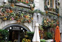 Floral Shop Inspiration / Andrew's Garden is A Bit of European Floral Luxury.  As our shop grows and evolves over time, we look to these other gorgeous shops around the world for inspiration.