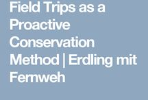 Environmentalist Education