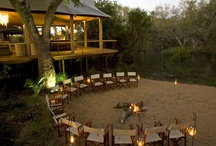 Hotels in Africa / by koisan Safaris