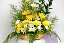 Yellow and White Gerberas in a Basket