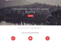 Nice & functional WP themes for reasonable price