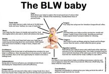 Brilliant baby led weaning / by Ashleigh McHugh