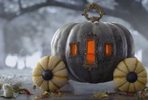 Autumn / by Wendi Dam-Mikkelsen