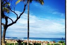 #hawaii