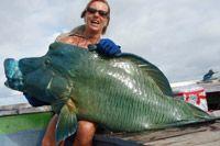 Fishing in Exotic India / India Exciting New Virgin Fishing Destination....Lakshadweep
