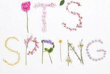 Primavera-spring