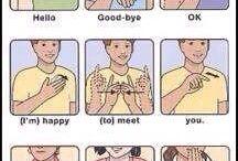 Learning Sign Language