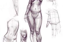 Body-study