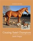 Model Horse Books / Books about the model horse hobby... collecting, showing, customizing, breeds, and more