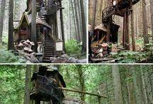 Treehouses / Dream inspiration