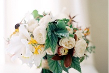 Real flowers / I love spring flowers. My favorite flowers are freesia and lily of the valley.   / by Noa Bern