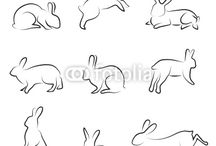 Rabbit-Outline Drawings